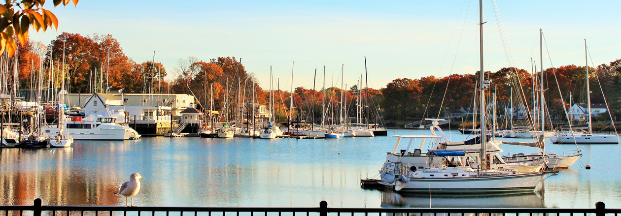 Westchester Marina - GioHomes Real Estate